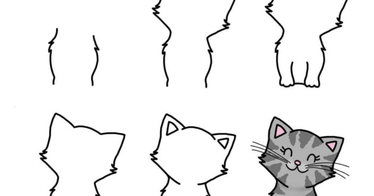 How to draw a Cat: Easy Step by Step tutorial