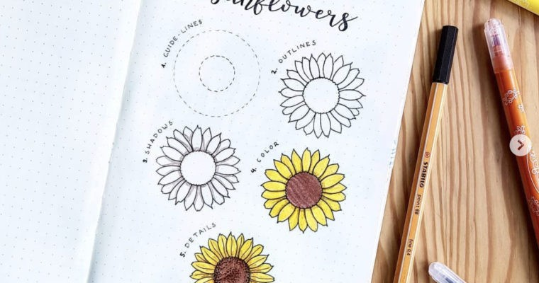 How to draw sunflower step by step