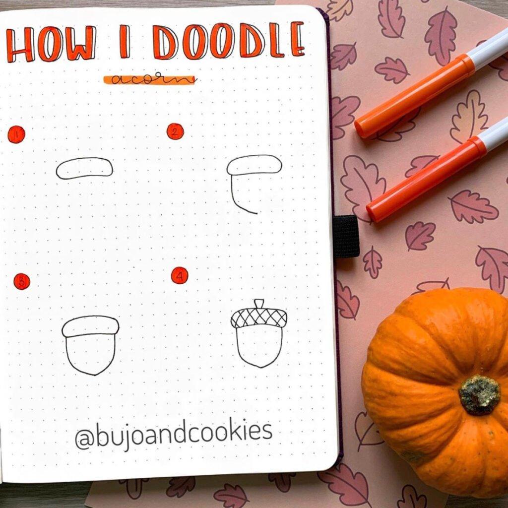 how to draw acorn